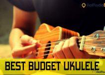 Best budget ukulele