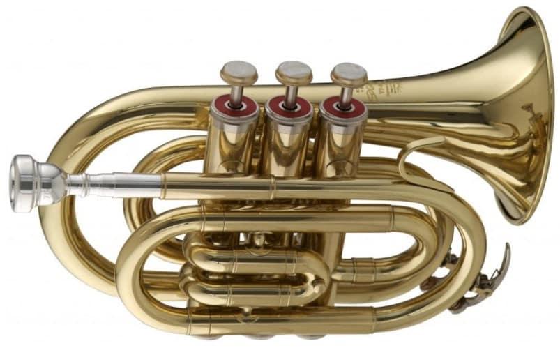 Stagg WS - TR245 - best pocket trumpet