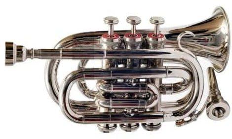 Queen - best pocket trumpet