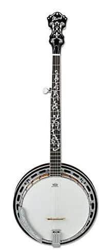 Ibanez B200 - best beginner banjo